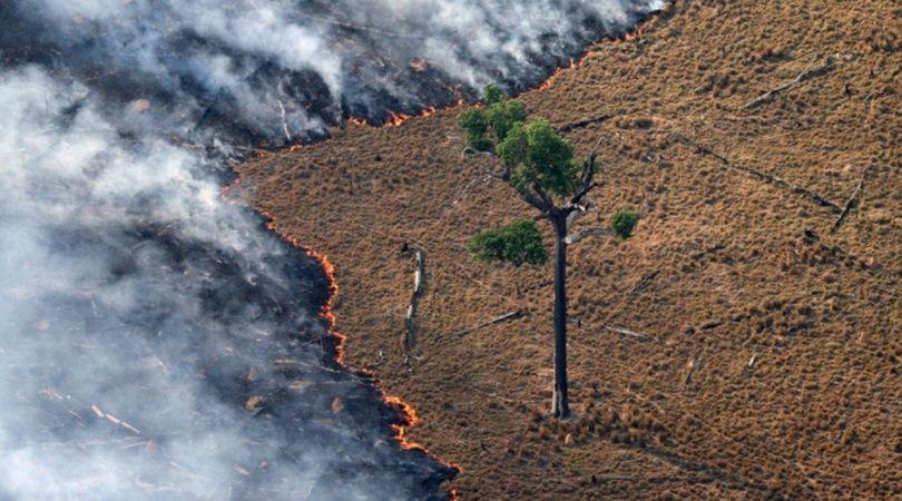 Firman un tratado para proteger recursos naturales del Amazonas